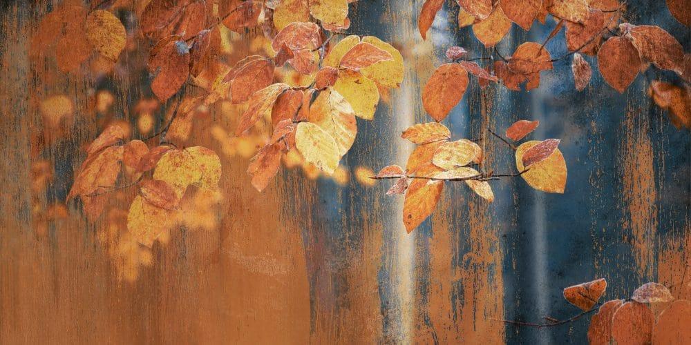 Rusted leaves art